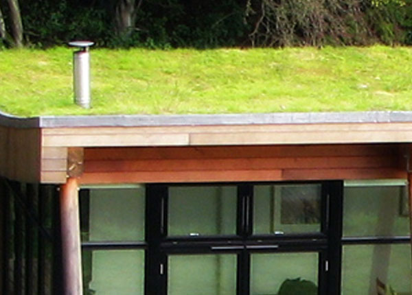 eco green and brown roofs roofing contractors plymouth. Black Bedroom Furniture Sets. Home Design Ideas